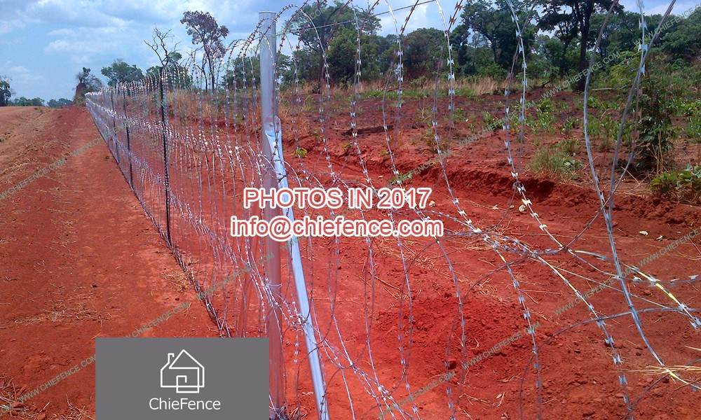 Razor wire for Zimbabwe