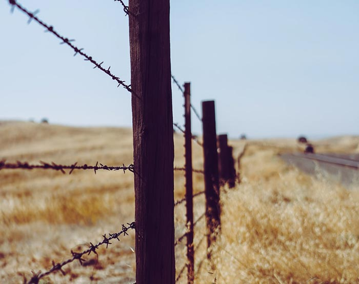 Barbed wire-01