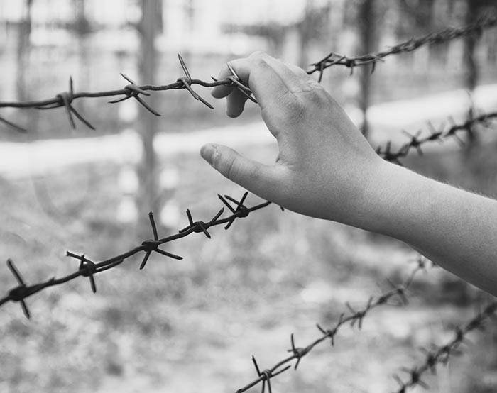 Barbed wire-02