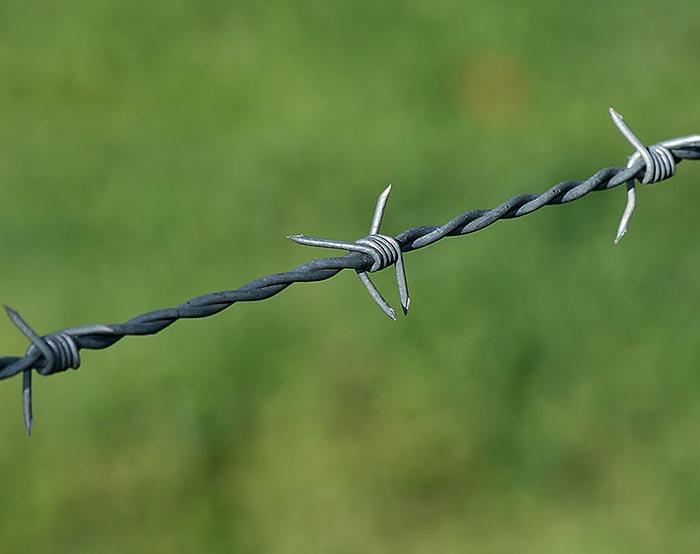 Barbed wire-05