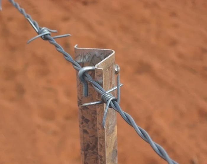 Barbed wire-06
