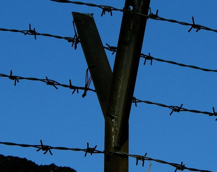 Barbed wire-07