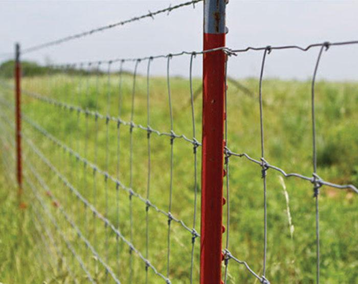 Feild Fence 01