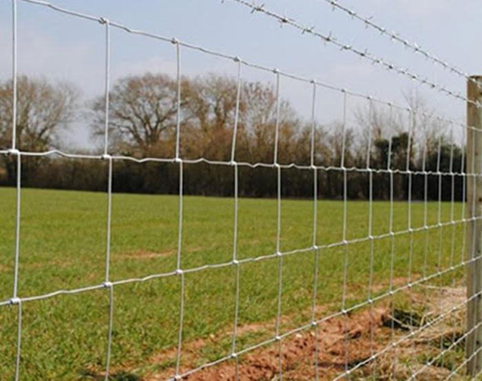 Feild Fence 02