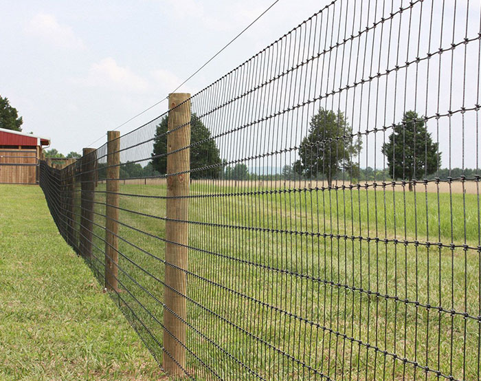 Feild Fence 07